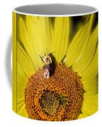 Sun Bee Coffee Mug