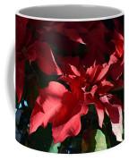 Sun Blushed Poinsettia  Coffee Mug