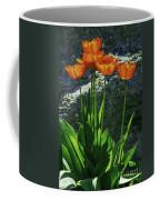 Sun-filled Coffee Mug