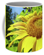 Sun Flower Art Sunlit Sunflower Giclee Prints Baslee Troutman Coffee Mug