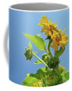 Sun Flower Artwork Sunflower 5 Giclee Art Prints Baslee Troutman Coffee Mug