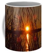 Sun In Reeds Coffee Mug