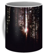 Sun In The Forest  Coffee Mug