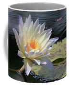 Sun Kissed Allure Coffee Mug