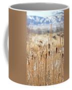 Sun Kissed Cattails - Casper Wyoming Coffee Mug