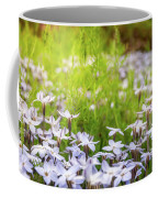 Sun-kissed Meadows With White Star Flowers Coffee Mug