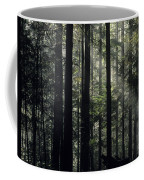 Sun Light Coffee Mug