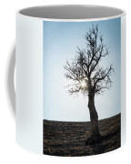 Sun Rays And Bare Lonely Tree Coffee Mug