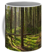 Sun Rays In Forest Coffee Mug