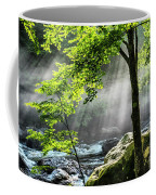Sun Rays On Williams River  Coffee Mug