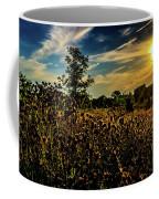Sun Setting At Valley Forge Coffee Mug