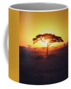 Sun Through Acacia Coffee Mug
