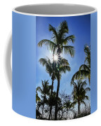 Sun Through Smathers Beach Palms Coffee Mug