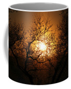 Sun Trees Coffee Mug