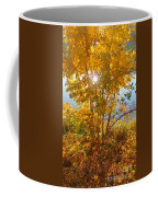Sun Warmth Coffee Mug