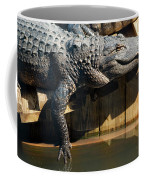 Sunbathing Gator Coffee Mug