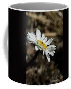 Sunbathing On A Daisy Coffee Mug