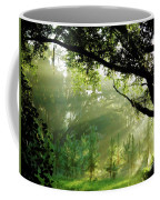 Sunbeams In The Forest Coffee Mug