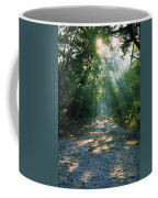 Sunbeams Through Trees Coffee Mug