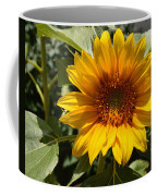 Sunflower Art- Summer Sun- Sunflowers Coffee Mug