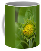 Sunflower Bud Coffee Mug