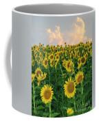 Sunflower Faces At Sunset Coffee Mug