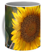 Sunflower - Facing East Coffee Mug