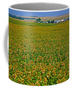 Sunflower Farm In Northwest North Dakota  Coffee Mug