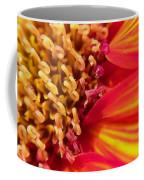 Sunflower Fire 4 Coffee Mug