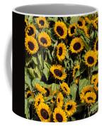 Sunflower Near Van Gogh Museum Coffee Mug