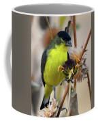 Sunflower Seed Snack Coffee Mug