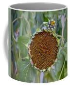 Sunflower Seedhead Coffee Mug