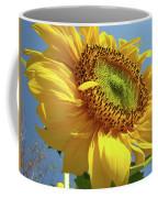 Sunflower Sunlit Sun Flowers 6 Blue Sky Giclee Art Prints Baslee Troutman Coffee Mug