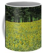 Sunflowers 3 Coffee Mug