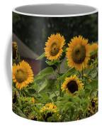 Sunflowers And Red Barn 2 Coffee Mug
