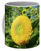 Sunflowers Art Prints Sun Flower Giclee Prints Baslee Troutman Coffee Mug