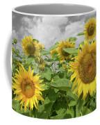 Sunflowers I Coffee Mug by Dylan Punke