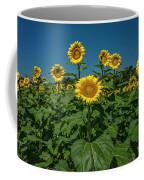 Sunflowers Weldon Spring Mo Ver1_dsc9821_16 Coffee Mug