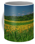Sunflowers Weldon Spring Mo_dsc9830_16 Coffee Mug
