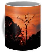 Sunken Sun Coffee Mug