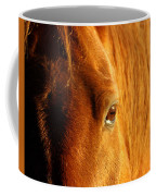Sunlight Eyes Coffee Mug