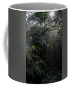 Sunlight Falling Into Glen With Bright Leaves, Vertical Coffee Mug
