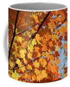 Sunlight In Maple Tree Coffee Mug