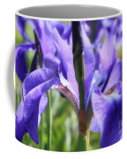 Sunlight On Blue Irises Coffee Mug by Carol Groenen
