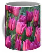 Sunlight On Pink Tulips Coffee Mug