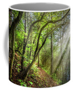 Sunlight On The Trail Coffee Mug