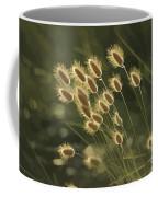 Sunlight On Wild Grasses Coffee Mug