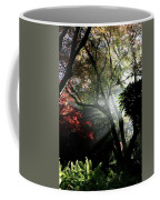 Sunlight Through The Tree In Misty Morning 1. Coffee Mug