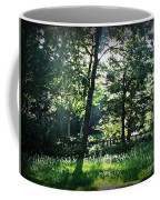 Sunlight Through Trees And Fence Coffee Mug
