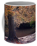 Sunlit Autumn Canopy Coffee Mug